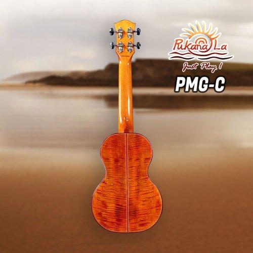 PMG-C