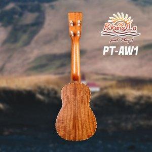 PT-AW1