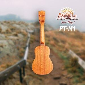 PT-M1