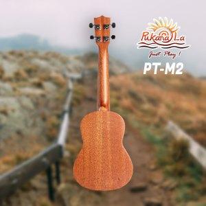 PT-M2