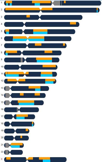 Esther Chromosome Browser