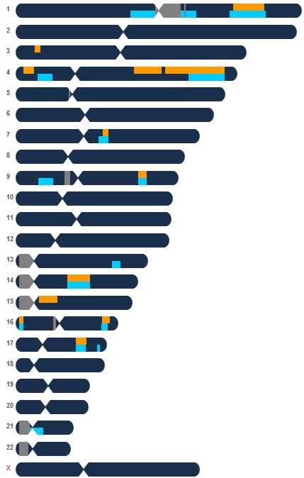 Butler Pouliot Chromosome Browser