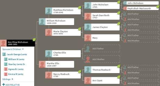 Ann Nicholson Ancestors