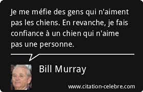 Citation Bill Murray confiance : Je me méfie des gens qui n'aiment pas les  chiens....
