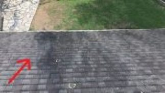 stained shingles means you need roof repair