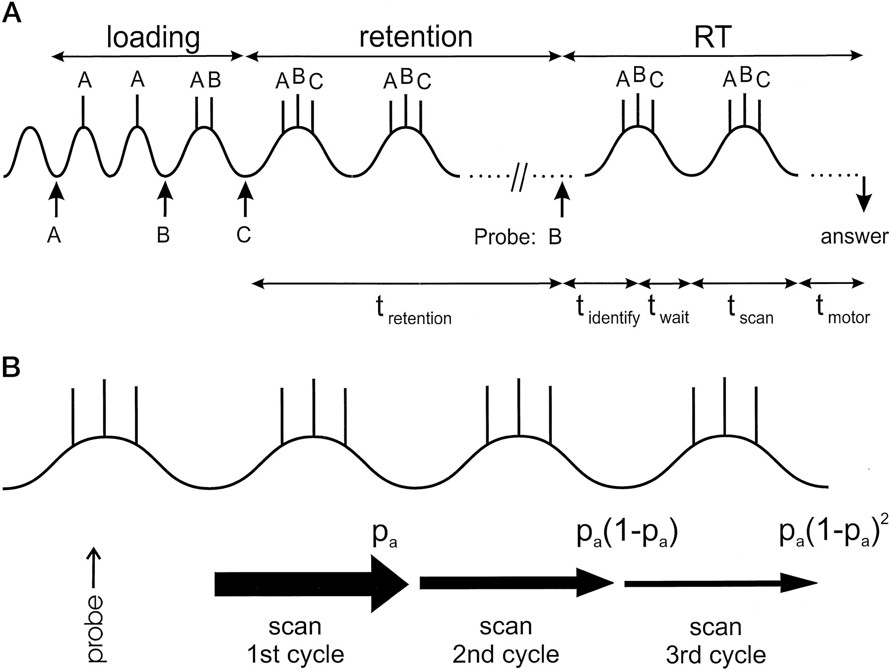 An Oscillatory Short Term Memory Buffer Model Can Account