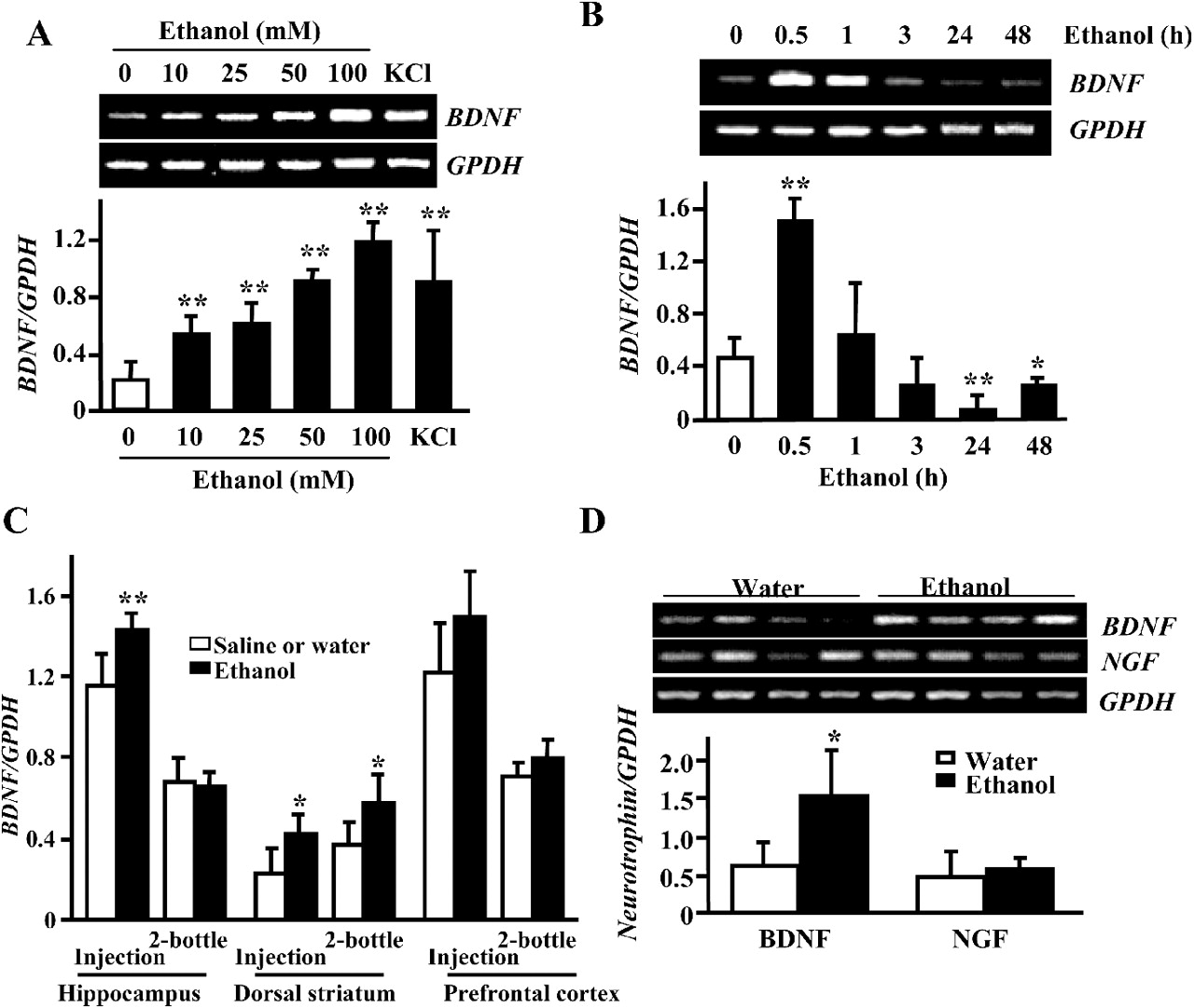 Rack1 And Brain Derived Neurotrophic Factor A Homeostatic Pathway That Regulates Alcohol