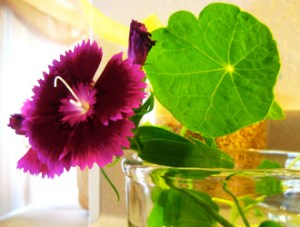 How to crystalize edible flowers and leaves using vegan egg replacer.
