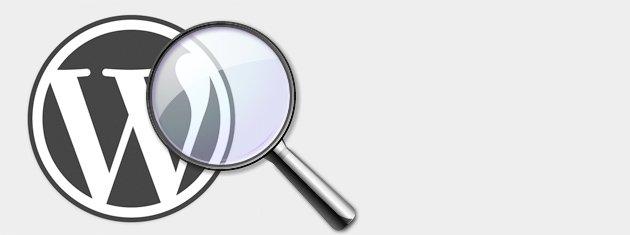 Buscador de WordPress