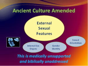 Ancient Culture Amended