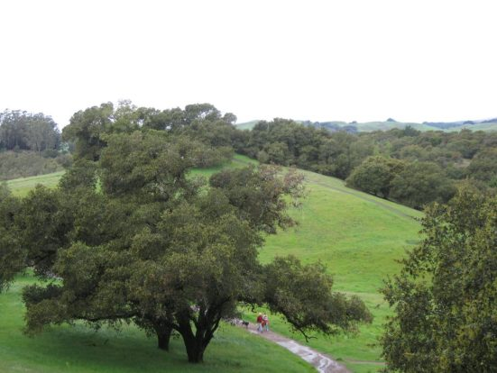 The path of my life fulfilling the goals in my life led to Westwood Hills in Napa, CA