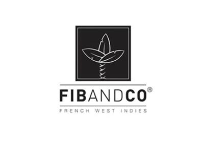 Tutoriel – FIBandCo