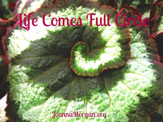 Life Comes Full Circle by Joanna Morgan 4-17-13