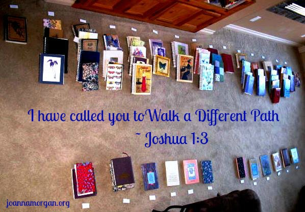 Walk A Different Path by Joanna Morgan 2-28-14