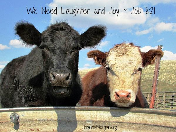 We Need Laughter and Joy by Joanna Morgan