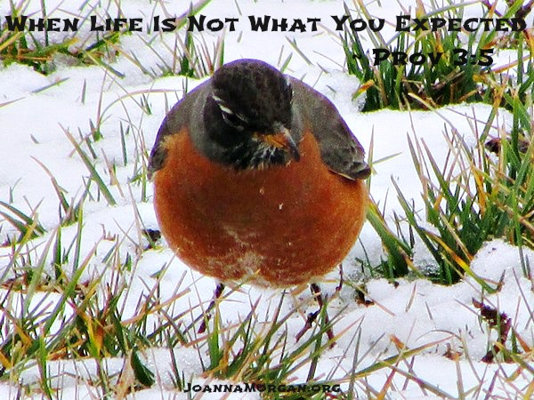 When Life Is Not What You Expected by Joanna Morgan