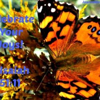 Celebrate Your Joys