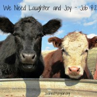 We Need Laughter and Joy