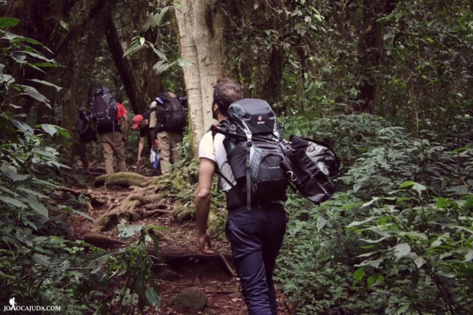 joão-cajuda-tanzaniaclimbing-kilimanjaro12- www.joaocajuda.com