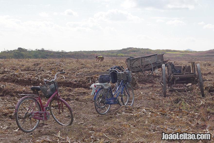 Agricultura e vida rural