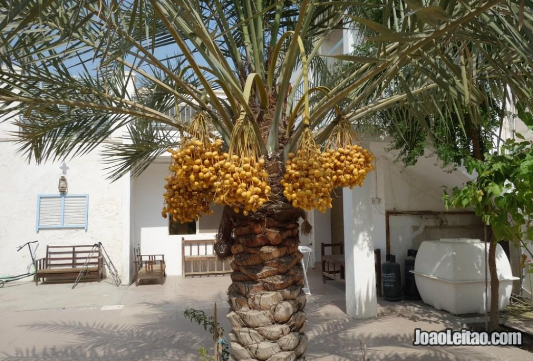 Pátio de uma casa particular no bairro histórico da ilha de Murharraq no Barém