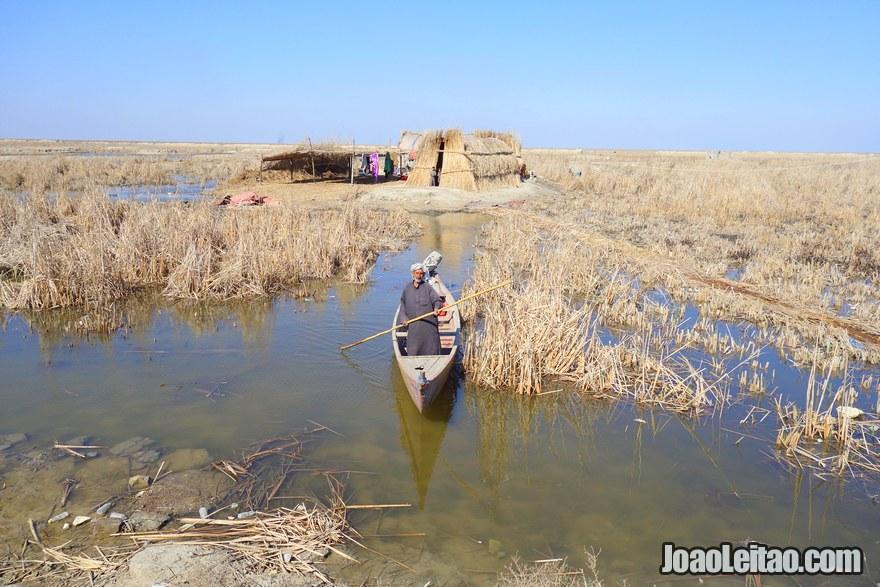 Zona dos pântanos do Iraque