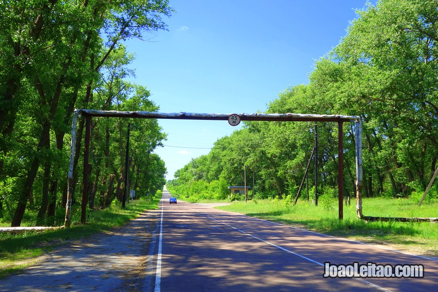 Road in Chernobyl Exclusion Zone