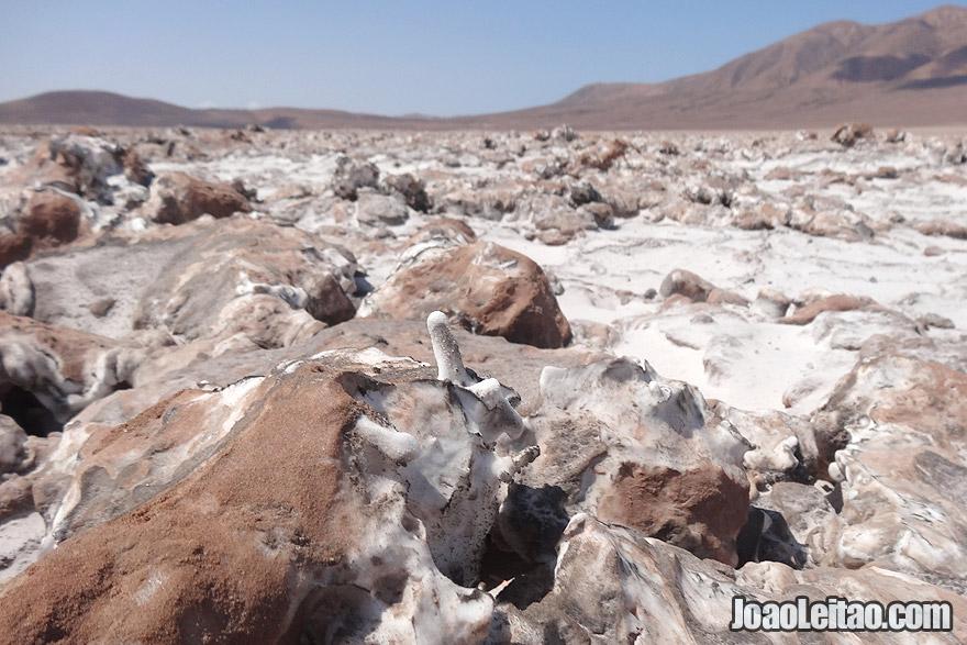Gran Salar, Atacama Chile