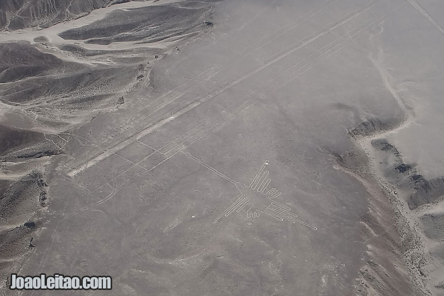 The enigmatic Nazca Lines