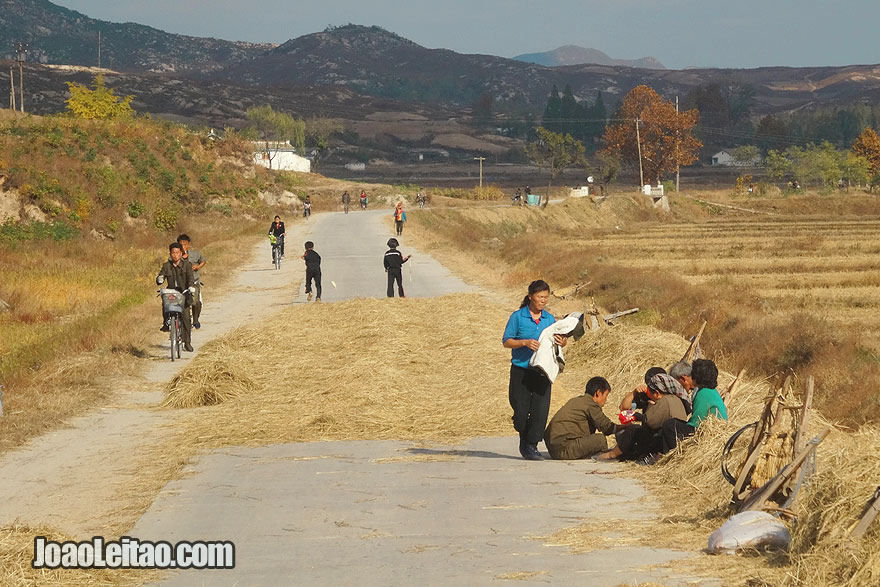 In DPRK countryside people use the road asphalt for threshing grains.