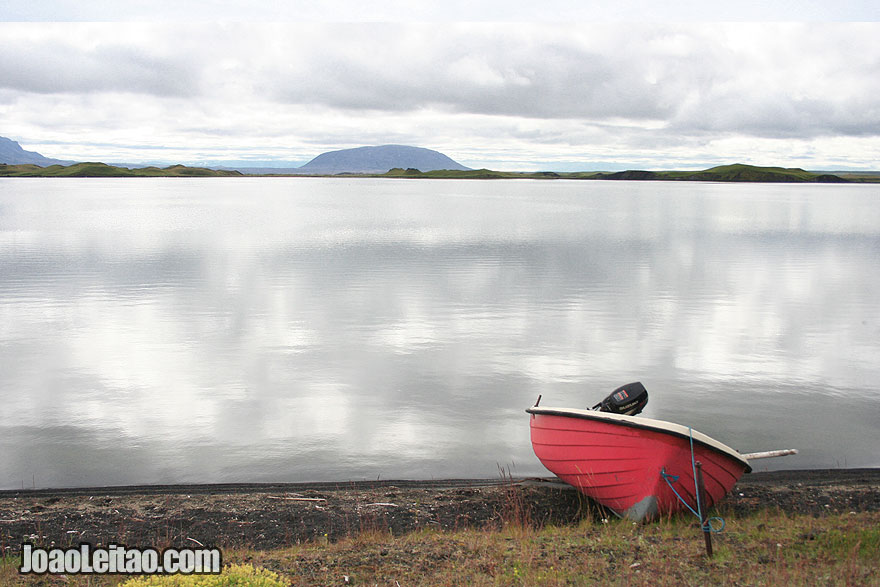 Visit Myvatn eutrophic lake Northeastern Region Iceland