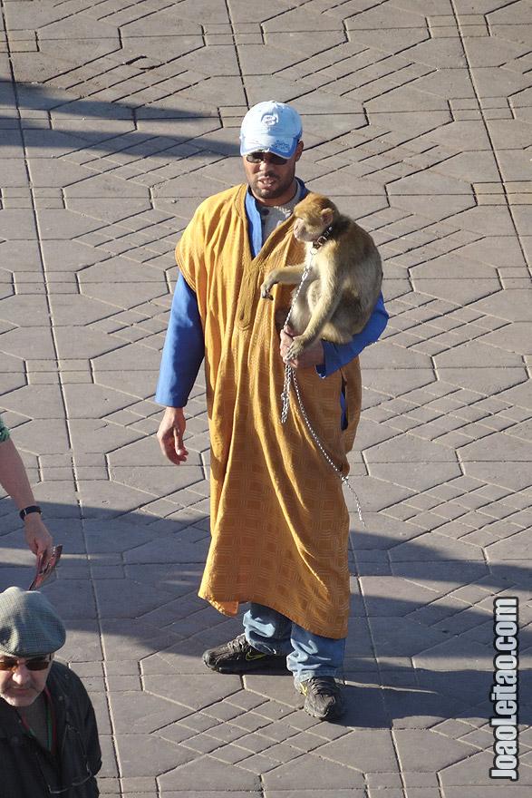Monkey Handler of Marrakesh