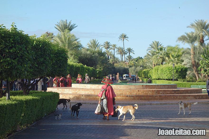 Water seller in Marrakesh