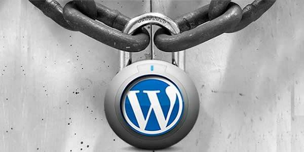 seguridad en wordress