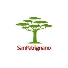 COMUNITA' SAN PATRIGNANO SOCIETA' COOPERATIVA SOCIALE