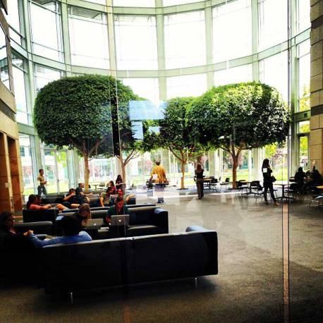 Zona de descanso de los trabajadores de Apple