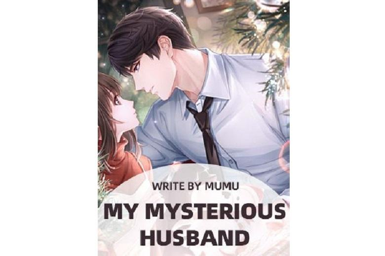 My Mysterious Husband
