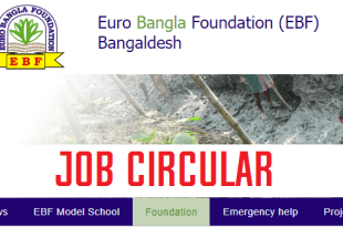 euro bangla foundation job circular