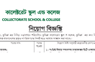 Collectorate School and College Job Circular 2018
