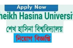 Sheikh Hasina University Job Circular