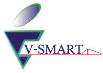 System Analyst ( E-commerce System) – V-Smart Co., Ltd.