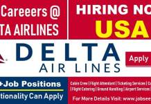 Delta Airlines Jobs Exciting Recruitment at Delta Airlines Careers 2018