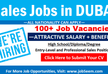 Sales Jobs in Dubai (Vacancy and Salary) UAE for Freshers and Experienced