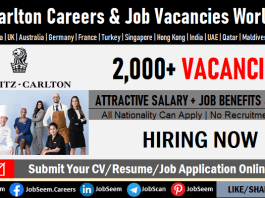 Ritz Carlton Careers Opening, Apply for Latest Jobs at the Ritz Carlton Yacht Collection Employment Opportunities