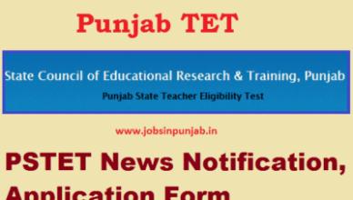 pstet Punjab Tet