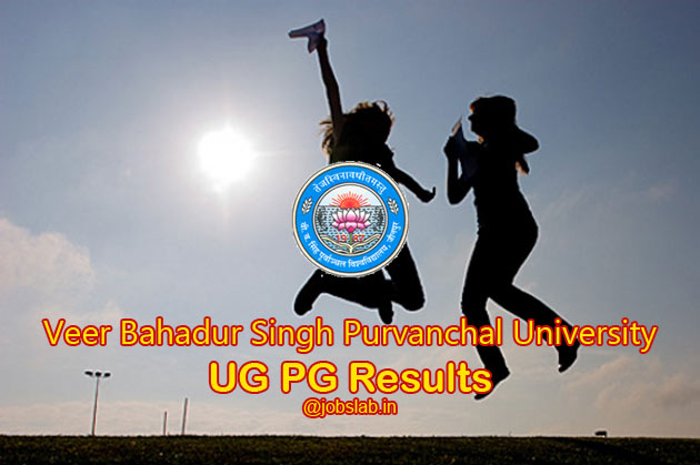VBS Purvanchal University Result Declared Check VBSPU Results