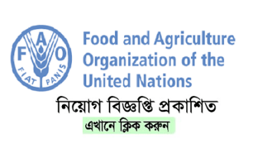 Photo of Food and Agriculture Organization (FAO) Job Circular 2019
