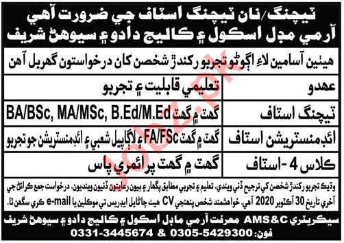 Army Model School & College AMS&C Sehwan Sharif Jobs