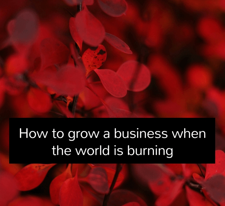 How to grow a business when the world is burning