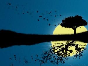 reflective-tree